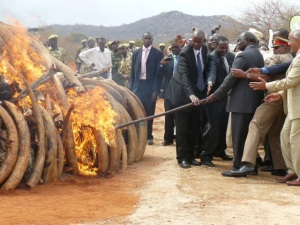 Tsavo West Ivory Burn