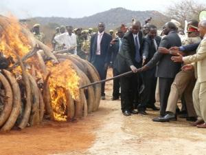 Tsavo West Ivory Burn
