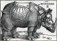 durer-rhinoceros-1515